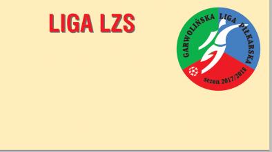 Liga LZS