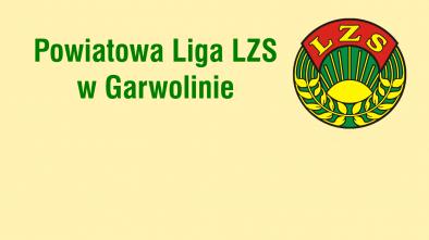 logo Powiatowa Liga LZS